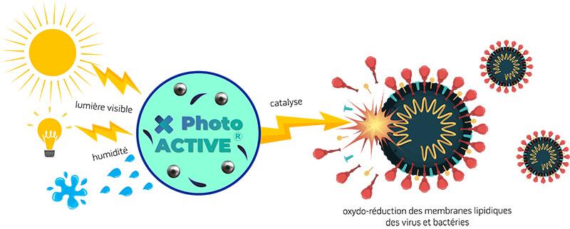 schéma d'efficacité photoactive face au virus et bactéries.