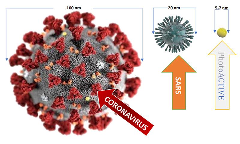 taille de photoactive en comparaison d'autres virus comme le covid 19